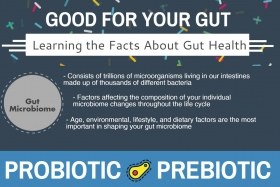 Infographic: Gut Health