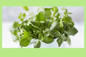 Ingredient Profile: Watercress
