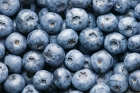 Q: What is an Antioxidant? What are Some Good Sources of Antioxidants?