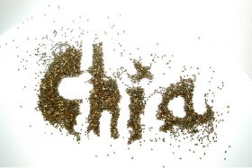 Chia Seeds: Everything You Need To Know + 3 Recipes