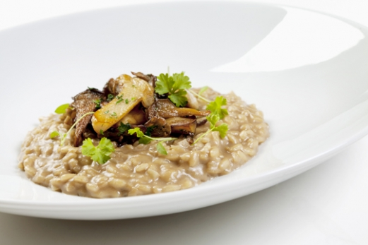 mushroom risotto wild mushroom risotto wild mushroom risotto with the ...