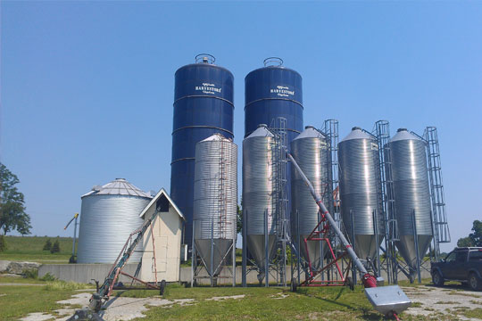 Grain farming at Lightning Tree Farm